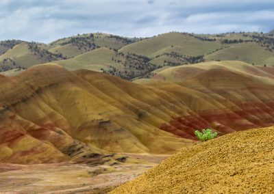 Painted Hills_20150519_00101-Pano