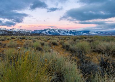 Sierras and Rabbit Brush_20161202_00001-Pano